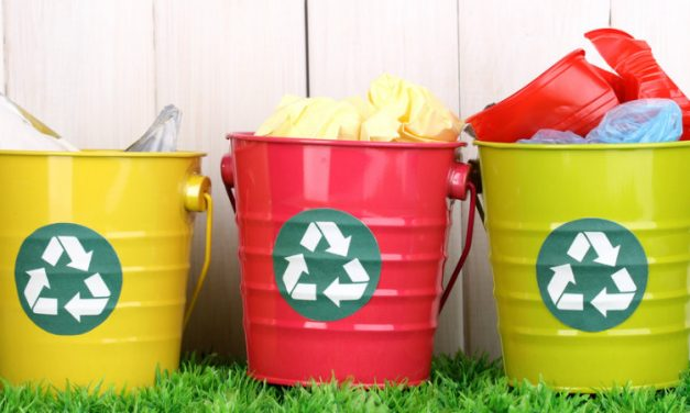 Entenda os impactos das PPPs na gestão de resíduos sólidos das cidades