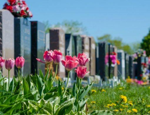 gestão de cemitérios